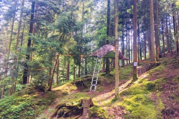 Baumzelt-Übernachtung, ´Schwarzwald (2 Pers.) - Elchesheim-Illingen