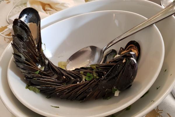 Fisch und Meeresfrüchte in Radebeul
