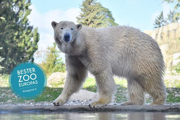 Zoo Rostock - Tageskarte
