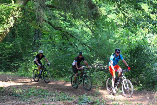 Gruppenticket: Geführte Mountainbike Tour - Naturreservat