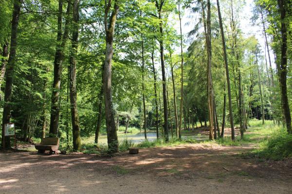 Ticket Groupe: Visite guidée de la réserve Natura 2000
