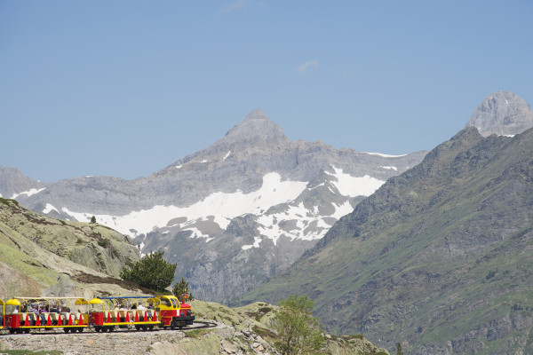 Admirez la faune et la flore de la vallée d'Ossau avec le petit train d'Artouste