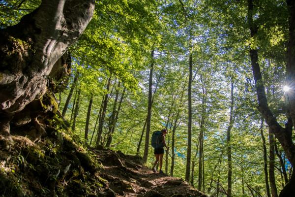 Course d'orientation dans les Pyrénées