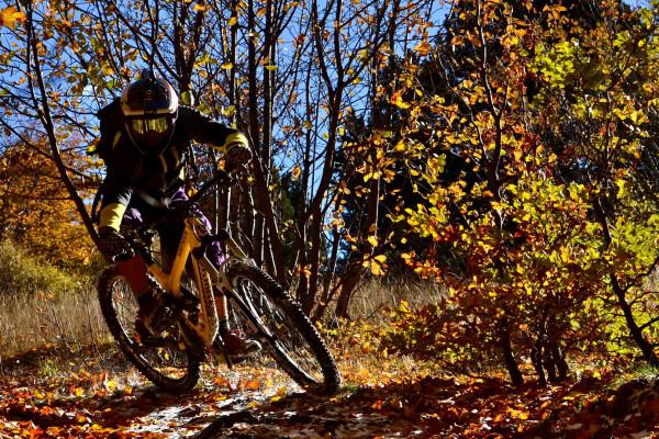 Jour-J VTT Bike Park + Freeride