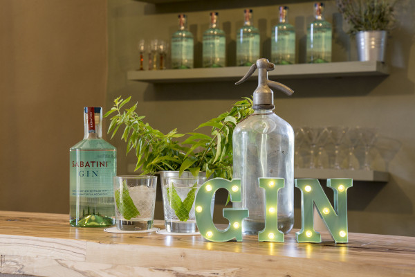 Tuscan Gin Experience