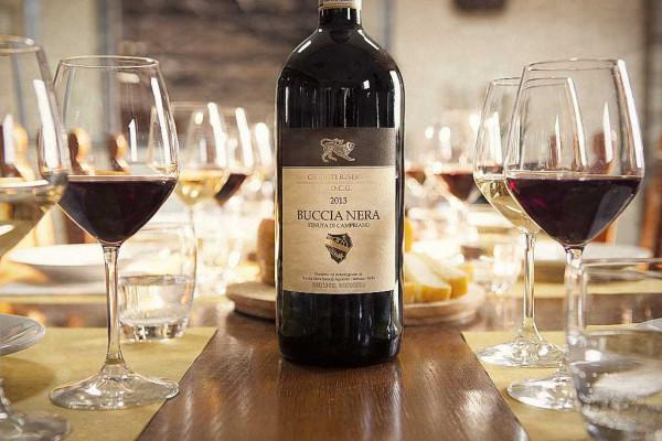 Buccia Nera Winery Chianti Wine Tasting