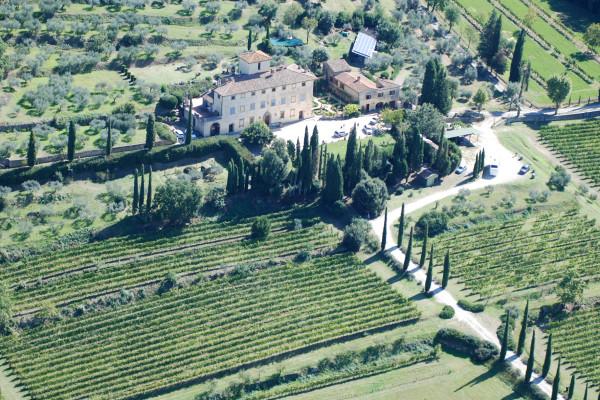 Cosmetici di Vino e degustazione d'olio Villa La Ripa