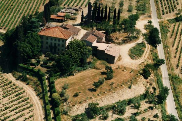 Il Muro Wine Tasting in Historical Wine Cellar