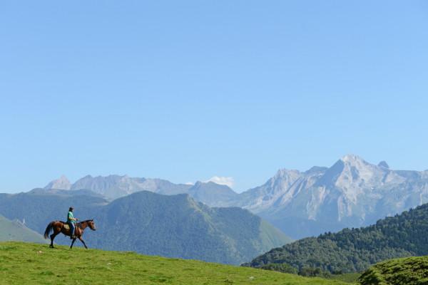 Cheval dans les Pyrénées