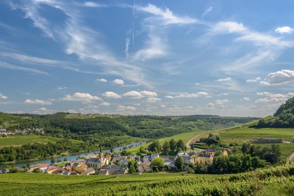 Wein- und Naturpfad Palmberg (auf Anfrage)