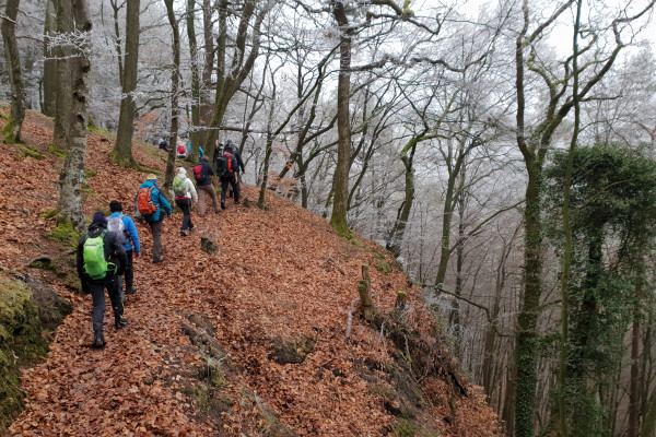 Hiking tour between the holidays in Luxembourg-city