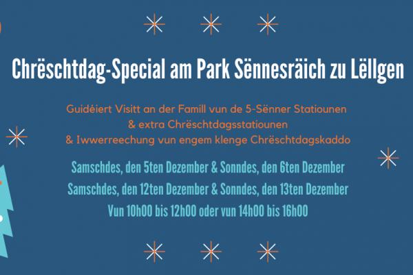 Entréesticket: Chrëschtdag-Special am Park Sënnesräich