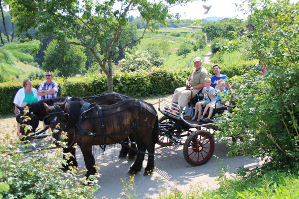 Horse carriage ride in Clervaux
