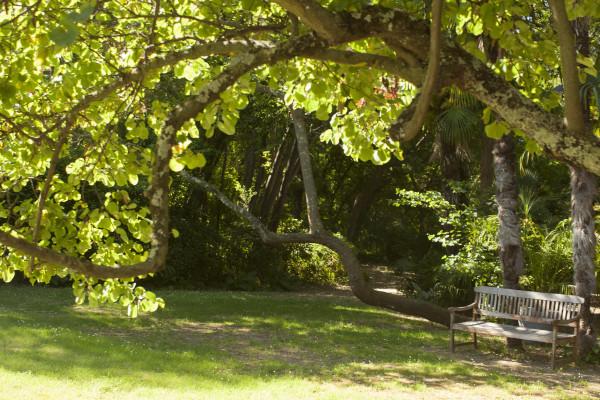 Flâneries aux Jardins