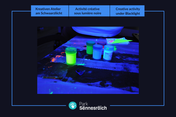 Ticket: Creative activity under Blacklight