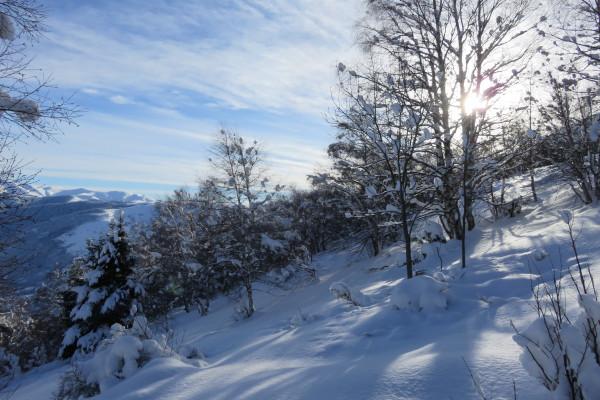 Séjour – Classe de Neige – Plat D'Adet – 5 jours – Pyrénées