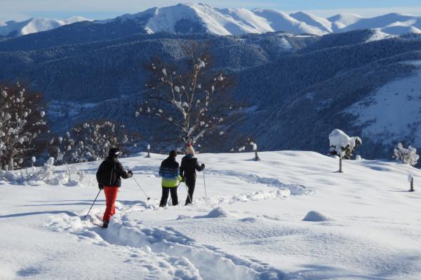 Raquettes, ski, construction d'igloo