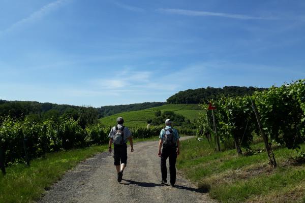 Fëlsbësch Panoramic Tour (sur demande)