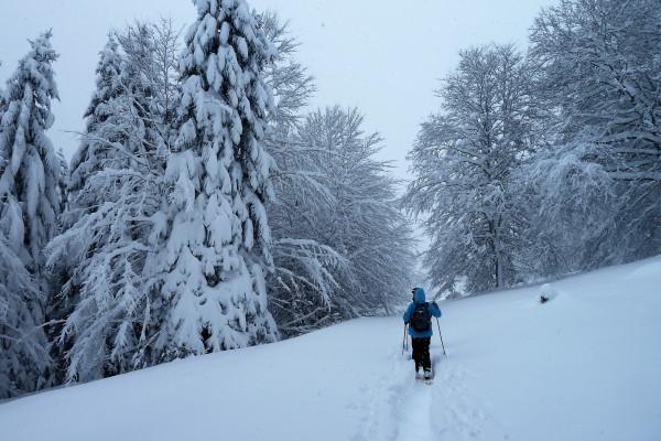 Pyrénées hiver