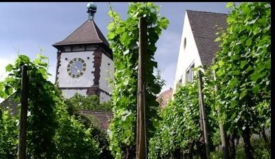 Altstadtführungen in Heringsdorf ✔