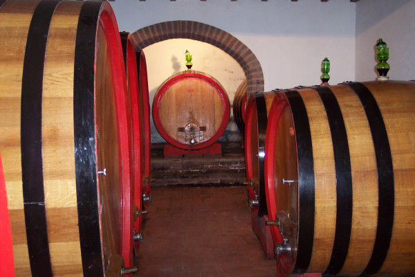 Degustazioni Vini Toscana - Wine tour San Gimignano Azienda Agricola San Quirico