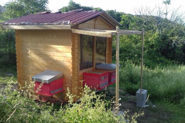 apiario integrato