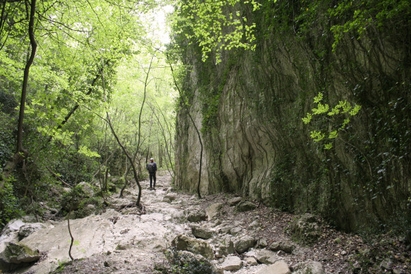 Valle Scappuccia - copertina
