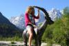 Adventure Trip: Kranjska Gora, Bovec, Bohinj from Bled