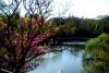 Fondurane Reserve stroll - 1h