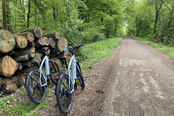 E-Bike Tours Sightseeing.lu - Nature Tour