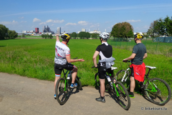 Customized Guided MTB Tour
