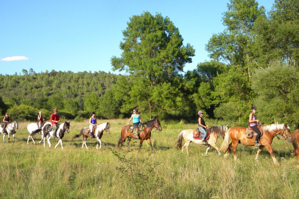 horseback ride to discover the lake of saint cassien - Les poun's en herbe