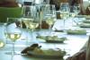 Käse & Wein – Verkostung in München