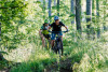 Mountainbike Tour im Oberharz für Einsteiger (Level 1)
