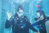 Tauchen in Gimbsheim - Open Water Diver Exclusiv Kurs