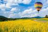 Ballonfahrt über Koblenz