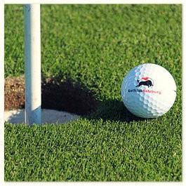 Golfkurs in Hof - Platz- und Turnierreife