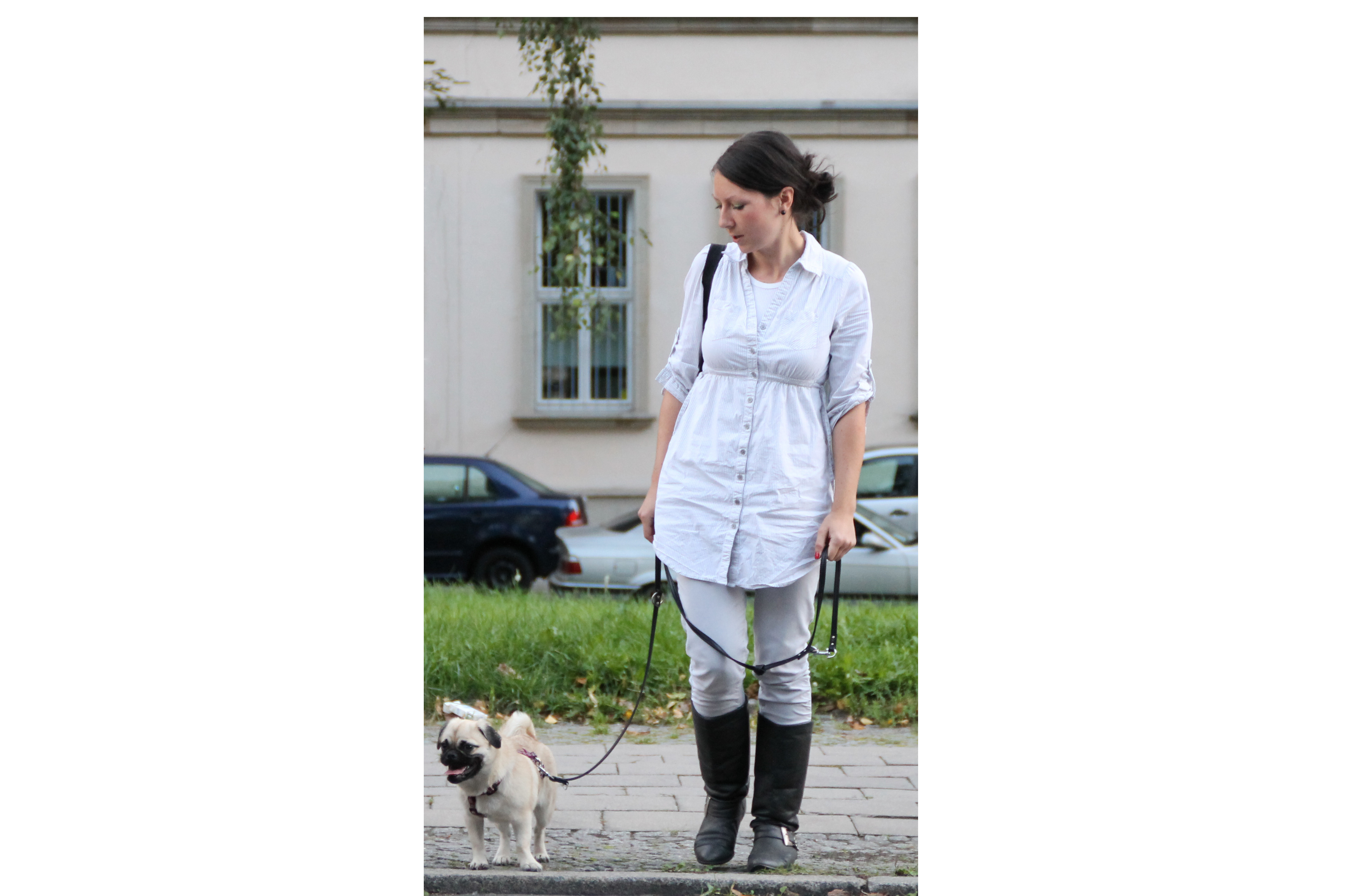 Großstadthunde in Berlin – Einzeltraining