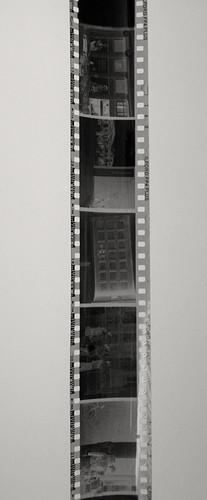 Hochqualitative Fotoapparat Filmentwicklung in Berlin