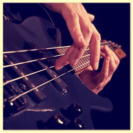 Memphis Blue Dogs Coverband aus Hamburg - Live Musik