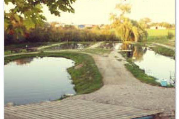 Angelteiche Teterow bei Rostock