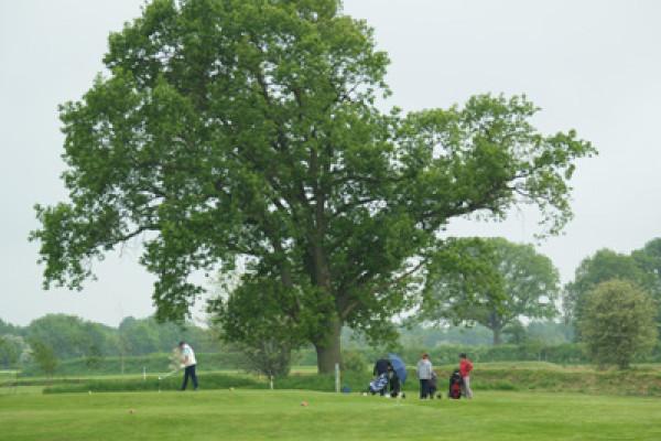 Golfclubg Plkay for Life auf GP Krogaspe