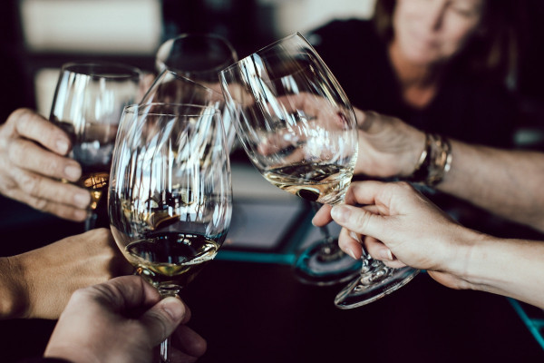 Wein Seminar für Einsteiger