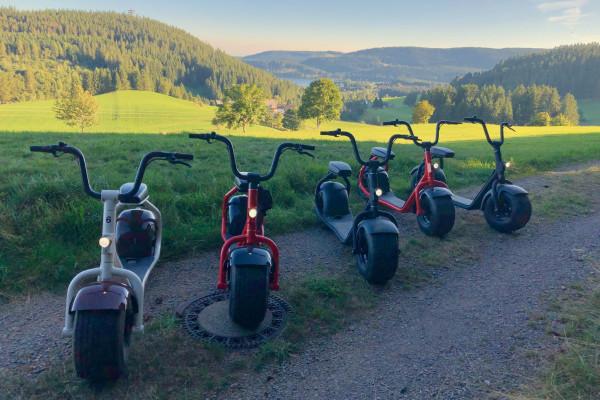 Scrooser Tour Zwei Seen Schwarzwald
