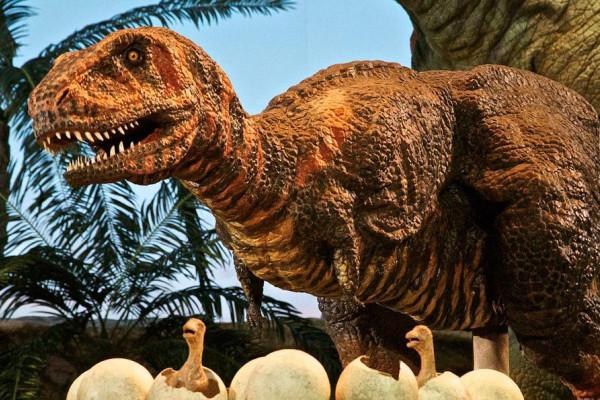 Dionsaurier in Gondwana - Das Praehistorium im Saarland