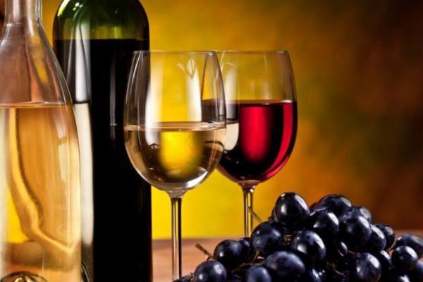 Weinverkostung Weinbergswanderung