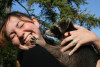 Waschbären - clevere, klein Gauner