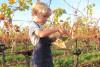 Les apprenti-e-s vigneronnes et vignerons