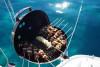Sortie Catamaran avec dîner Saint Raphaël - PROMO
