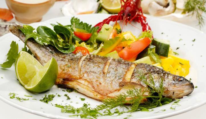 Kochen mit Fisch in Dresden